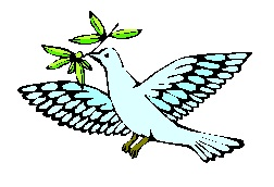 The Peaceful Dove Of Acceptance